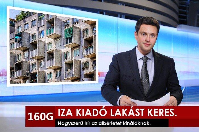 iza-alberletet-keres-tv