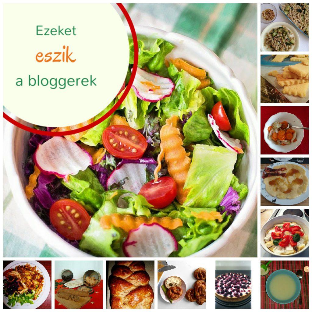 bloggerek-dietaja